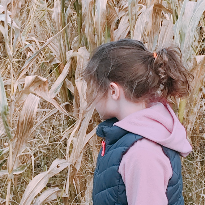 Nina checking out the corn maze